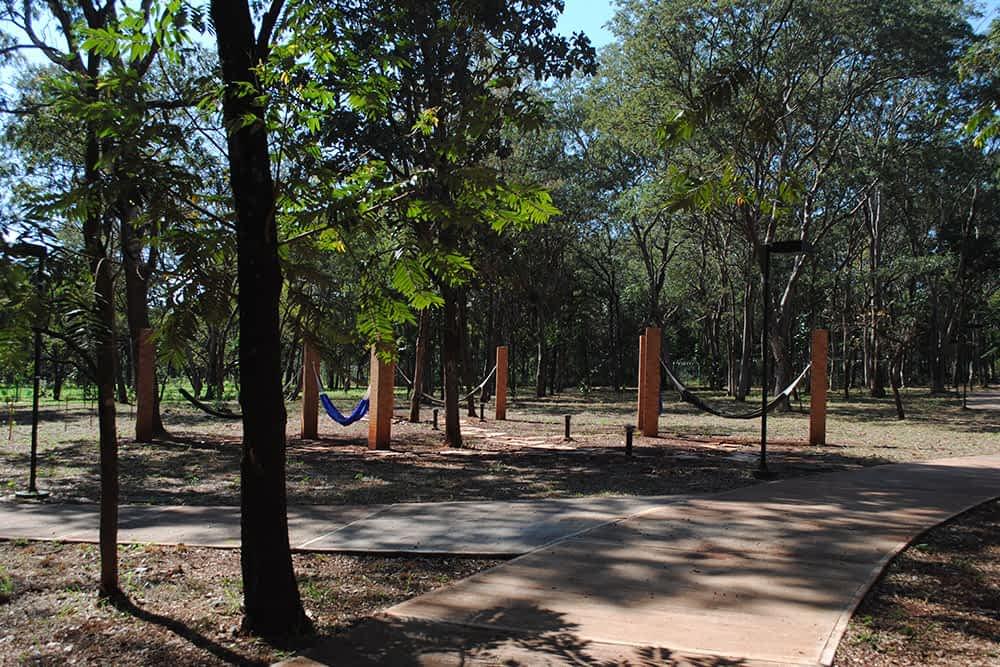 bosque-das-caviunas5